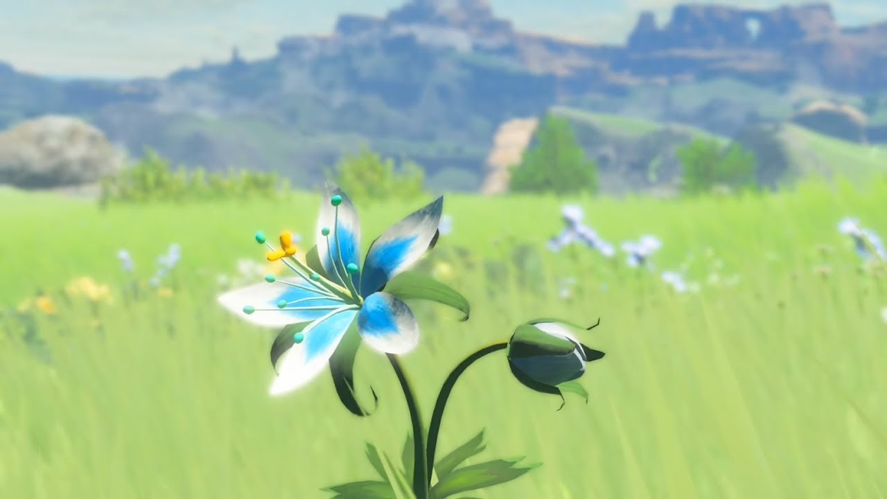 NPD Shares Top Five Zelda Games For The US